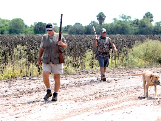 Many South Texas dove fields should be fairly dry for