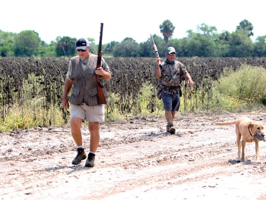 Many South Texas dove fields should be fairly dry for opening weekend, despite so much tropical rainfall in parts of Texas.