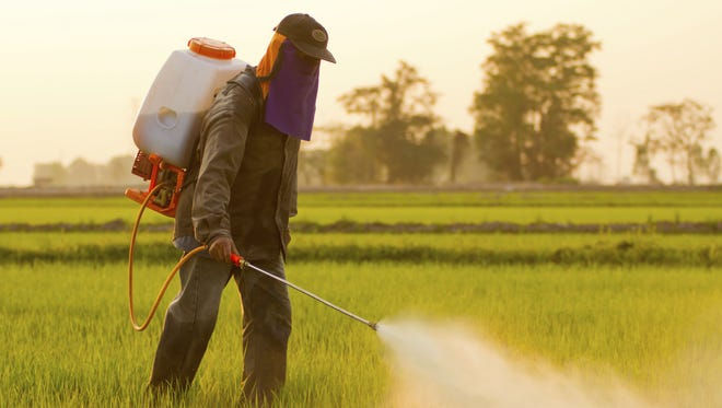 A private pesticide applicator initial training session will be held in Dutton in April.