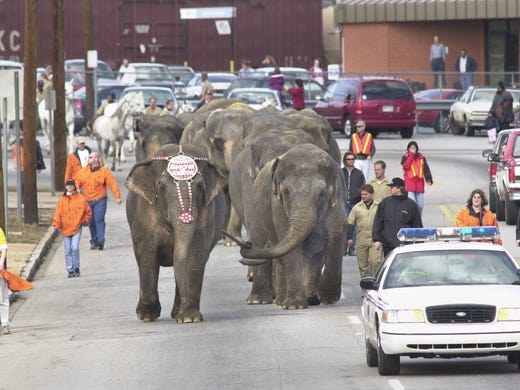 As the circus evolves, the last elephant show comes to