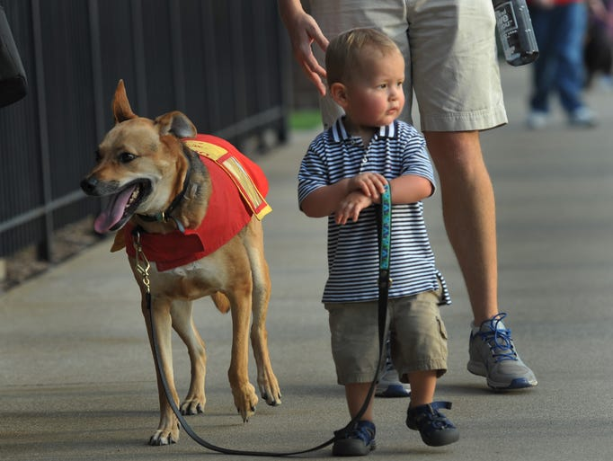 "Carter Crouch and Toby, at the Indianapolis Indians Bark in the Park in the outfield picnic area at Victory Field, Wednesday August 27, 2014. The indianapolis Star helped arrange a community connector between Devin Crouch, the woman behind the Instagram account ""Carter and Toby"" and The Indians."