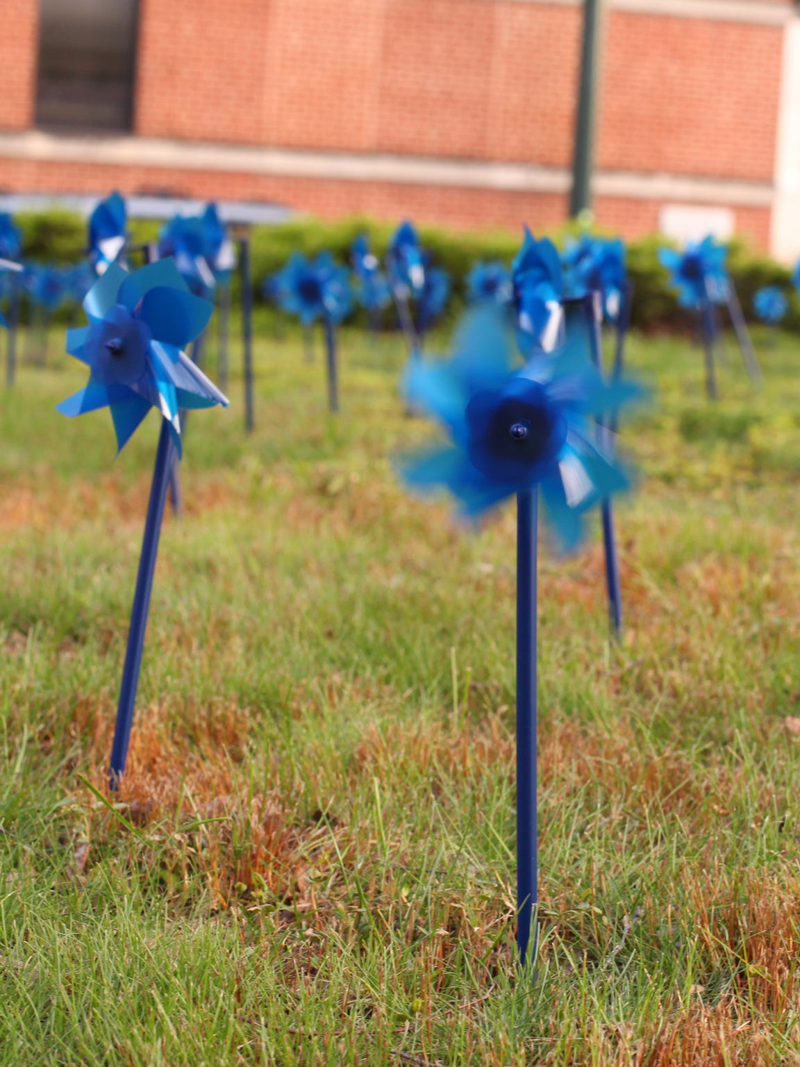 Pinwheels were placed on the lawn of the Augusta County Courthouse in Staunton on April 11 to represent the 182 local children, victims of physical and sexual abuse and neglect, who are helped on average each year by the Valley Children's Advocacy Center.