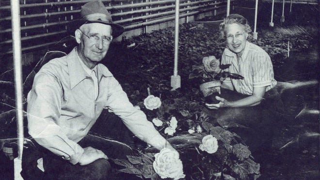 George Schmittuz and his wife, Lily, take care of his prized tuberous begonias in their greenhouse.