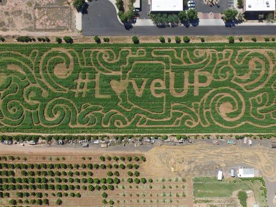 The theme for the 2015 corn maze at Vertuccio Farmswas