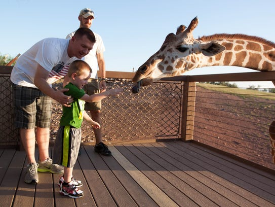 Matt Akins and Zachary Akins, of Goodyear, feed a giraffe