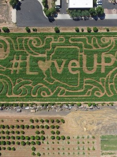 Through 11/6: Fall Festival and Corn Maze   Vertuccio Farms in Mesa hosts its annual fall festival. Admission includes a 7-acre corn maze, giant jumping pad, tube slides, a miniature hay maze, hop-along ponies, a spider-web climb, duck races, a petting zoo and a barrel train and tractor train ride.   Details: Through Nov. 6. 9 a.m.-9 p.m. Mondays-Thursdays; 9 a.m.-10 p.m. Fridays and Saturdays; 10 a.m.-6 p.m. Sundays. $9; free for age 2 or younger. 4011 S. Power Road, Mesa. 480-882-1482, vertucciofarms.com.