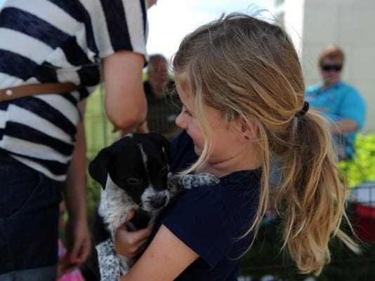 community wide adoption event