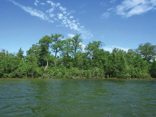 Image of the north island in Lake MacKaysee.