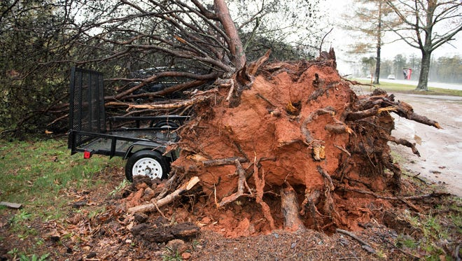 A tree rests on top of two cars and a trailer on White Horse Road in Berea following a storm on Monday, April 3, 2017.
