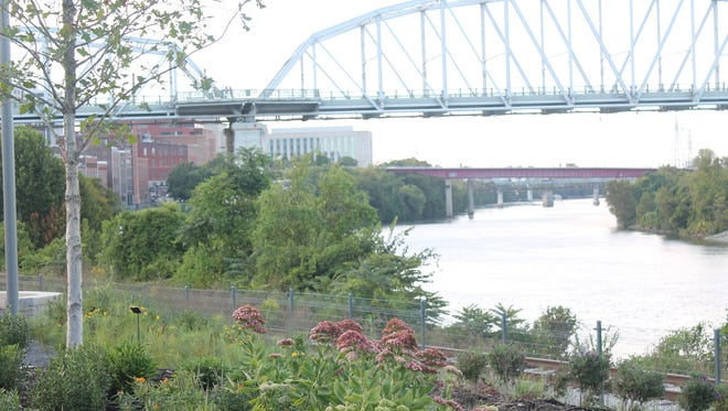 The Cumberland River and the John Seigenthaler Pedestrian Bridge are in view from Riverfront Park and along the Tree Trail.