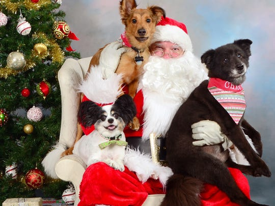 Bring your pets and have their picture taken with Santa.