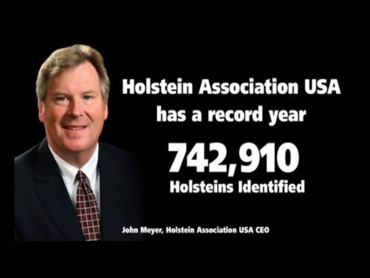 Holstein Association USA celebrates a record number of Holsteins identified.