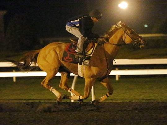 Wise Dan-Morning Work-KEE-040814-003.jpg