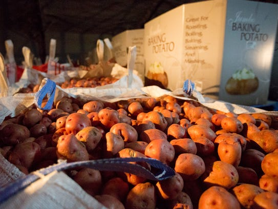 Red potatoes sit in storage at Okray Family Farms in