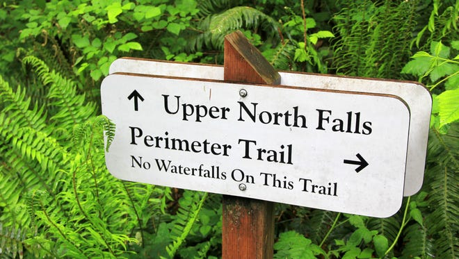 The Perimeter Trail takes off from the North Falls Trailhead at Silver Falls State Park are closed due to weather conditions.
