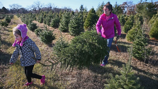Debbie Kraehnke and her granddaughter, Kenzie Stark, 4, both of Fort Atkinson, haul their tree out to the car at Riehle's Tree Farm in Dousman.