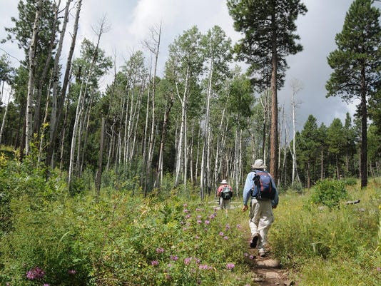 Mormon Lake Lodge trails
