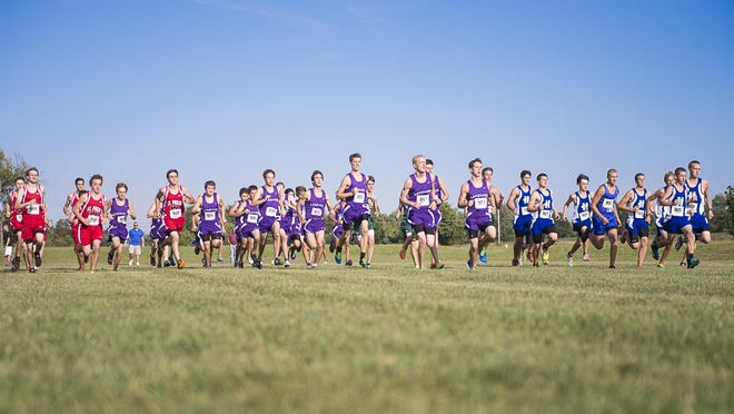 Boys take their start during the 2014 All-City Cross Country Meet.