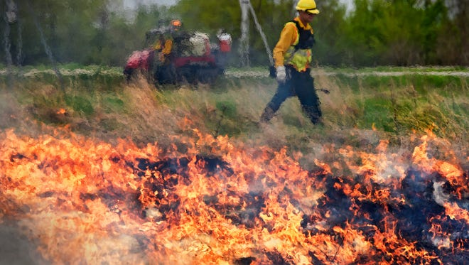 Minnesota Department of Transportation crew members conduct a prescribed burn Wednesday, May 10, near the Travel Information Center along U.S. Highway 10.