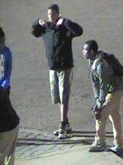 Purse-snatching suspects