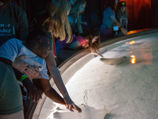 Bass Pro Shops and Camp Barnabas night at the museum