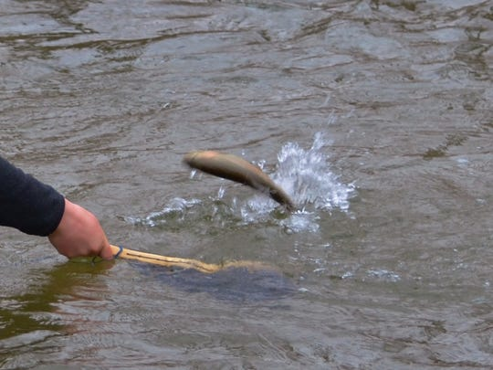 The trout season openers for Pennsylvania are just around the corner.