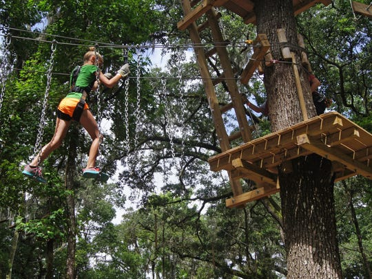 Walk, crawl, climb and zip through the forest at TreeHoppers