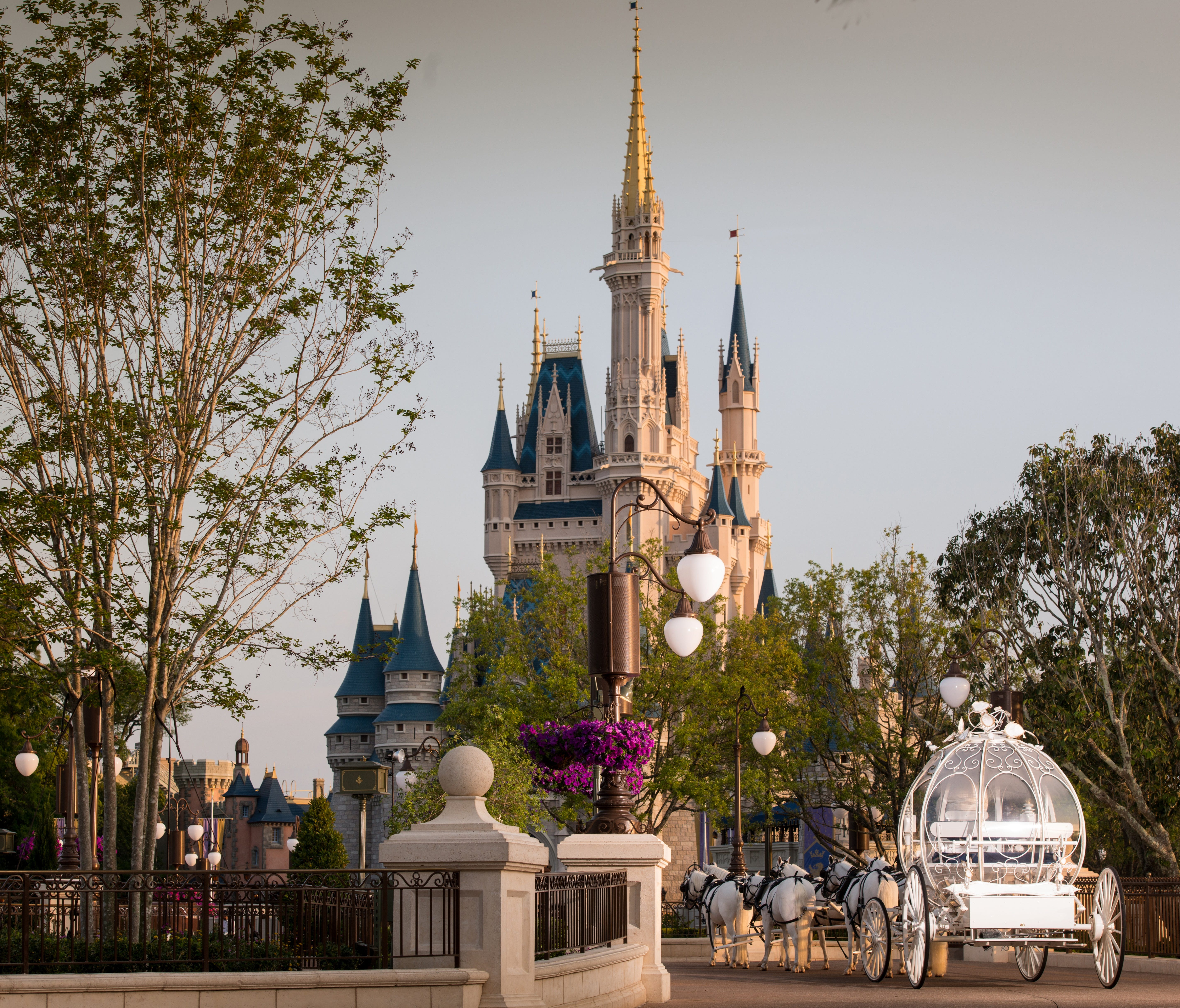 Exclusive disney announces weddings inside the magic kingdom khou exclusive disney announces weddings inside the magic kingdom publicscrutiny Image collections