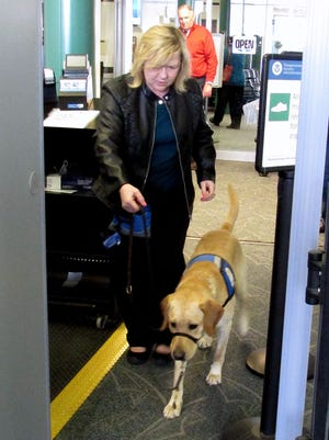 Handler Gaylynne Smith and Wiggins, a guide dog in training, pass through a metal detector Wednesday at the Elmira Corning Regional Airport.