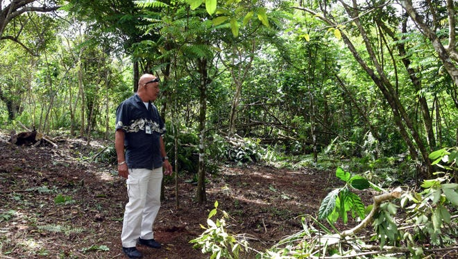 Department of Land Management Land Agent Jeff Aguon shows a recent clearing in Chamorro Land Trust land in Yigo on March 24, 2017.