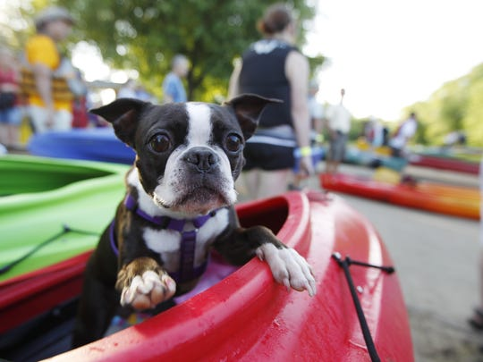 Kibbles, 5, helps Sara Garvin of Amelia wait in the boat as they prepare to take to the river for the Ohio River Way Paddlefest 2011.