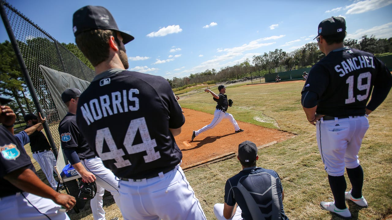 Sights and sounds from Tigers workouts in Lakeland