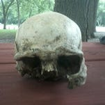 Skull found in Sac County June 11, 2016.