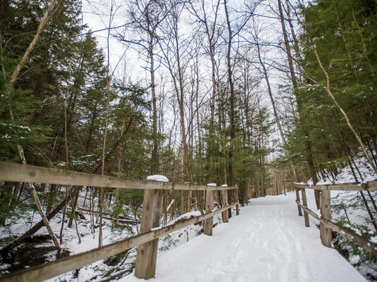 Binghamton University will build a $1 million living building facility on its 75-acre Nuthatch Hollow site on Bunn Hill Road. Living buildings are net-positive energy and water structures.
