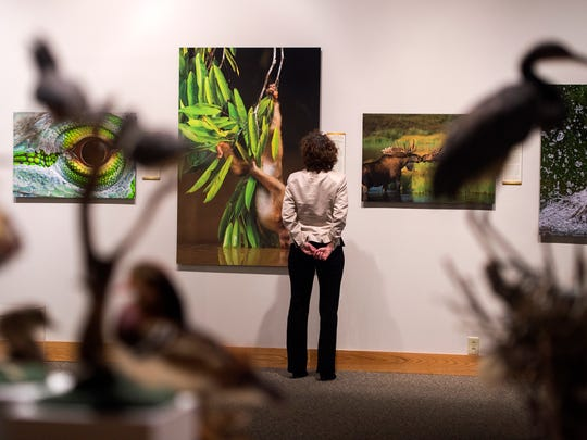 Roberson Museum Executive Director Terry McDonald worked for seven years to bring  Nature's Best Photography exhibit to Binghamton.