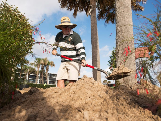 Marty Lewis of Vero Beach digs holes for plants as