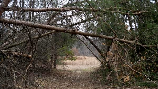 Get outdoors on a guided tour at Old Pine Farm in Deptford on Sunday afternoon at 2 p.m.