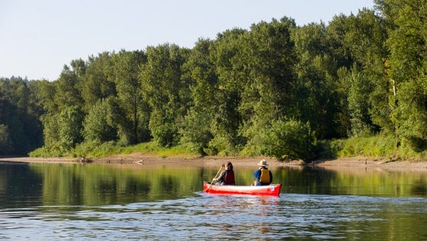 Photo courtesy of ODFW Two people paddle a canoe along the shoreline at Hayden Island across the Willamette River from Salem.