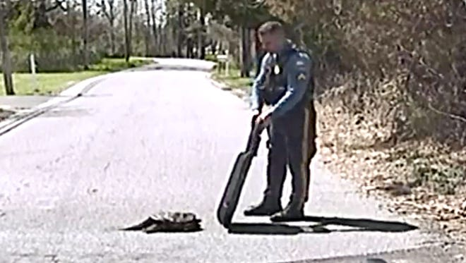 The officer is seen using a shield to protect himself from the turtle's fierce bite.