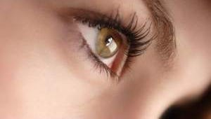 Before you log on, get focused on eye health.