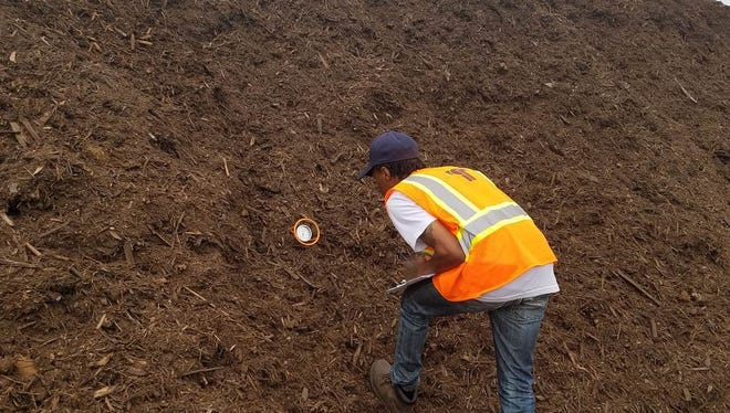 One of two Tempe Works employees taking a temperature reading on a compost pile.