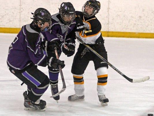 kjbHockey020615d.jpg