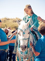 Meet an Arabian is one of the most popular events at