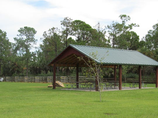 Picayune Strand State Forest offers recreational facilities for horse riders.