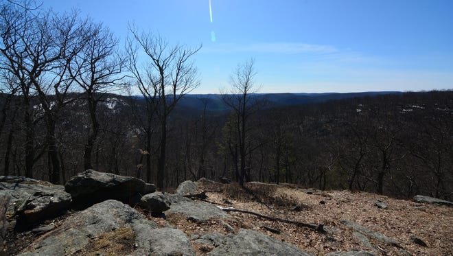 It takes about 30 minutes to reach the top of Carr Pond Mountain.