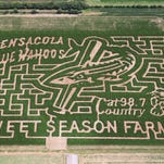 This year's corn maze at Sweet Season Farms is a tribute to the Pensacola Blue Wahoos.