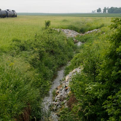Water flows down a stream June 11, 2015, that runs through land farmed by Wayne Siela in Vinton, Iowa. Siela says a buffer zone full of cover crops help filter out nitrates and other runoff before it ends up in the Cedar River.