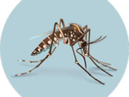 636168009594432594-mosquito-circ.png