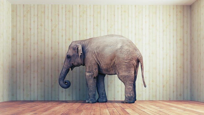 lone elephant in the room.