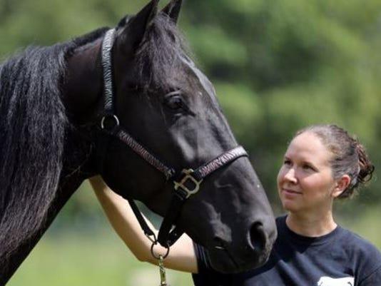 Tennessee-horse.jpg
